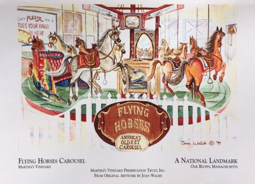 FLYING HORSES NOTE CARDS © Joan Walsh